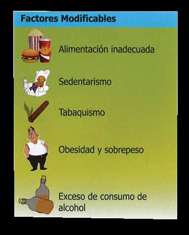 Guía De Promoción De Estilos De Vida Saludable Y Prevención De Enfermedades Crónicas No Transmisibles Ecnt
